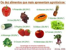 agroecológico3