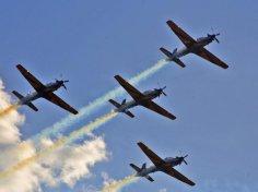 dia do aviador 6